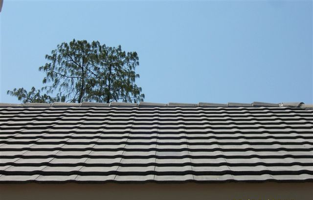 Horizon Roof Tile