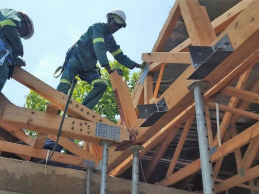 Roof truss remedies